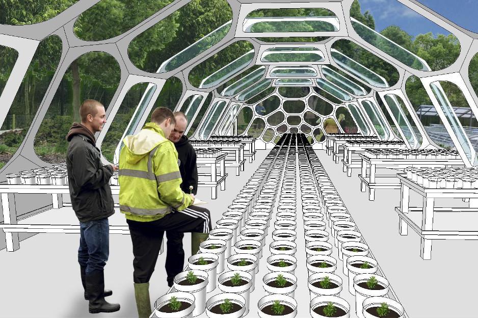 Suzanne Heath - Spaceplates Greenhouse
